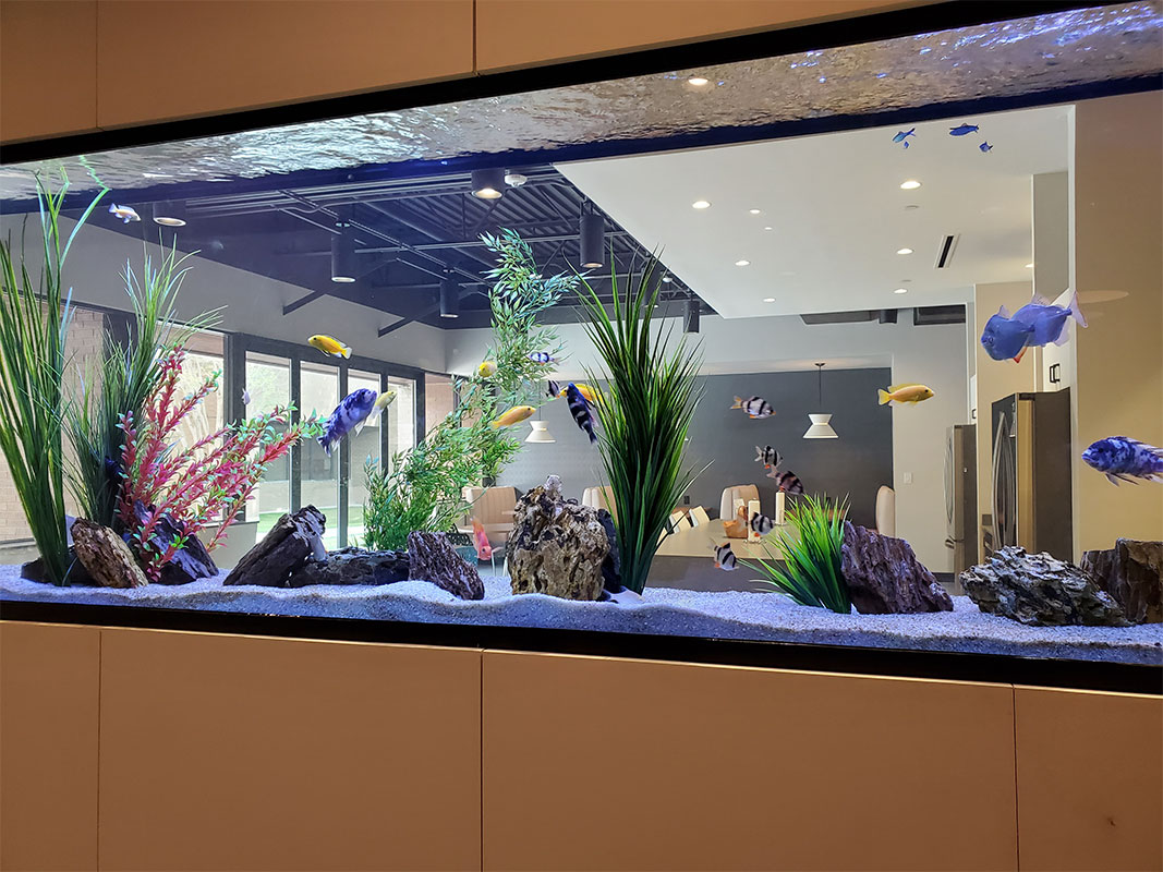 500-gallon-aquarium